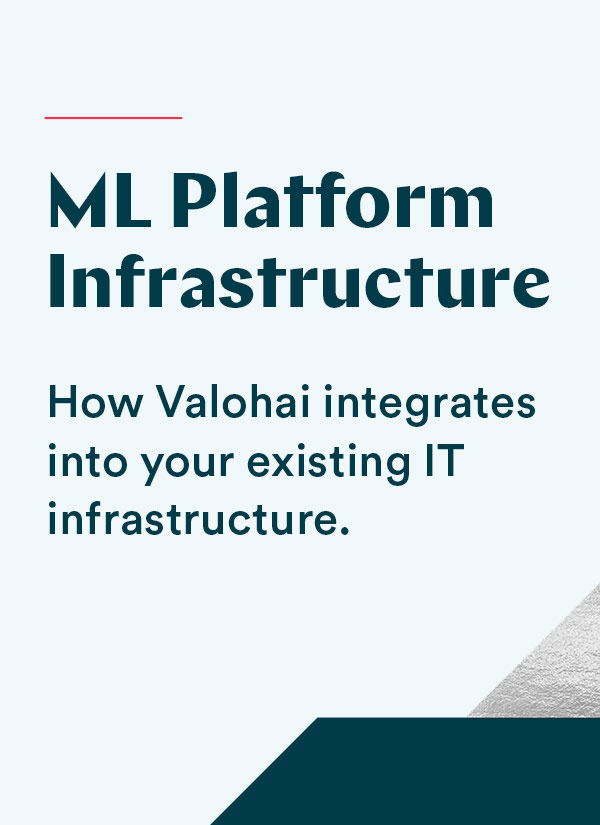 ML+IT infrastructure whitepaper